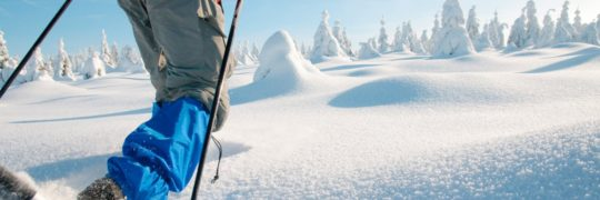 sneeuwschoentocht-berchtesgaden